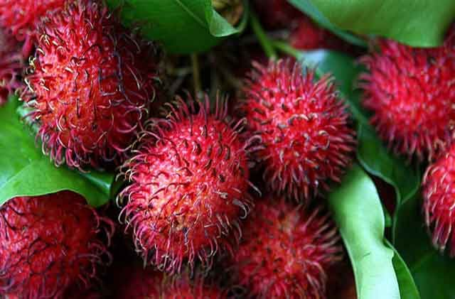 Amazing-Health-Benefits-of-Rambutan-Fruits