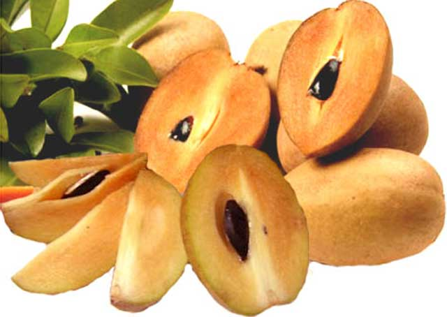 sapodilla fruit healthy fruits list