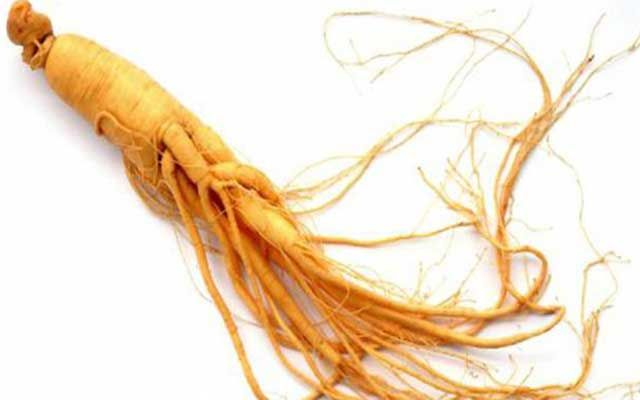 Ginseng-Benefits-for-Healthy-Hair