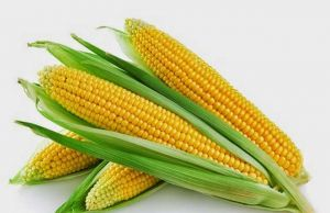 Health-Benefits-of-Corn-Oil