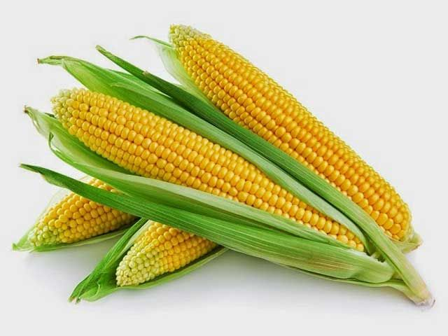 Health-Benefits-of-Corn-Oil