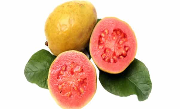 health benefits of red guava fruit