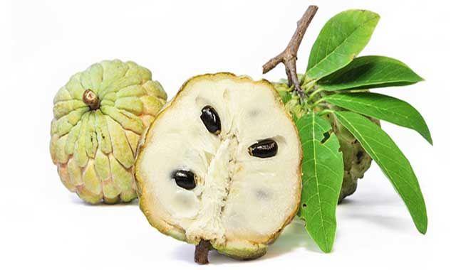 Custard-Apple-Health-Benefits