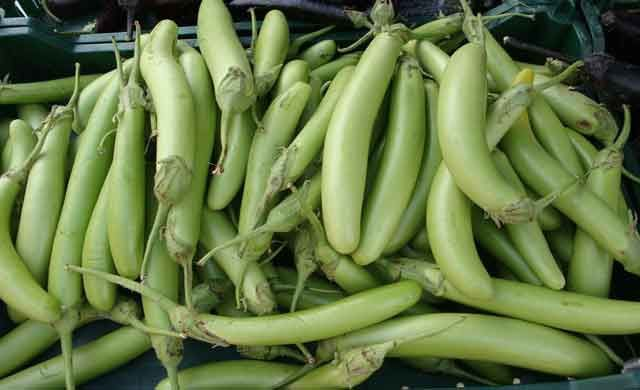 health-benefits-of-green-eggplant