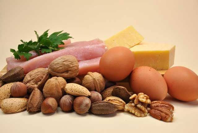 protein foods resources