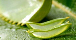 health benefits of drinking aloe vera juice