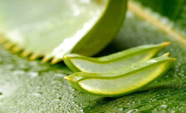 health benefits of drinking aloe vera juice