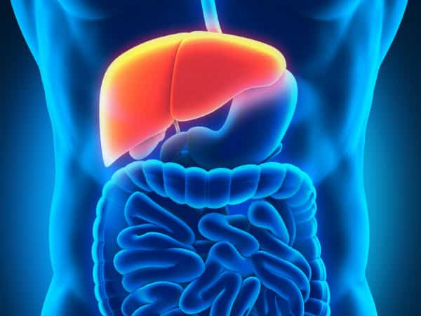 How to clean liver with natural herbs