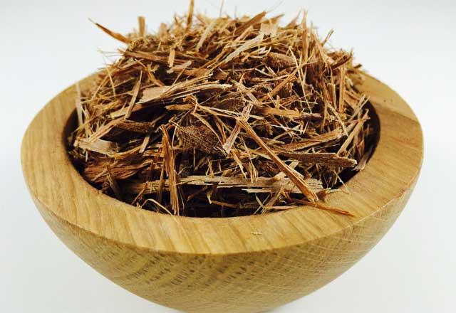 Ashoka tre bark Ayurvedic Medicine