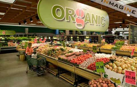 Benefits of Organic Food Products
