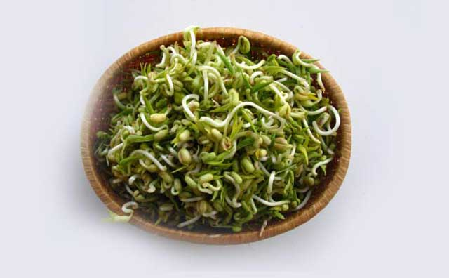 sprouts as sources of vitamin B17