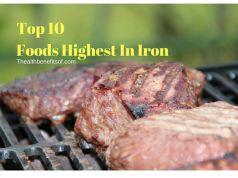 top 10 foods highest in Iron
