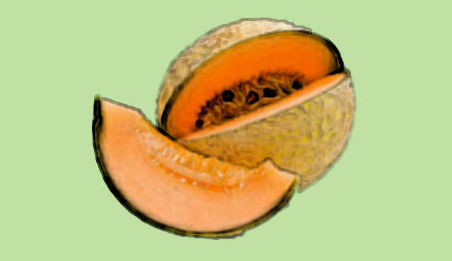 cantaloupe foods rich in vitamin c