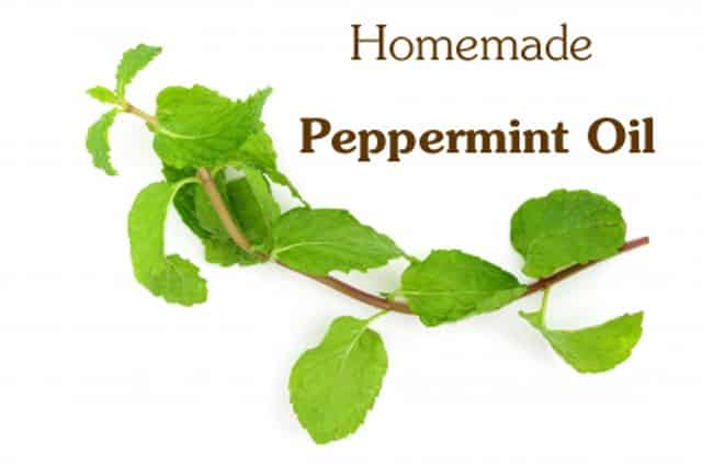 How to Make Peppermint Oil From Home