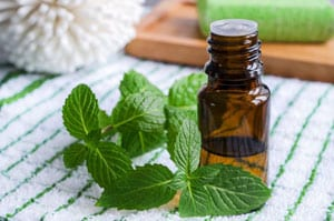 peppermint Essential Oils for Constipation