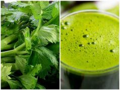 Celery, Natural Herb for High Blood Pressure