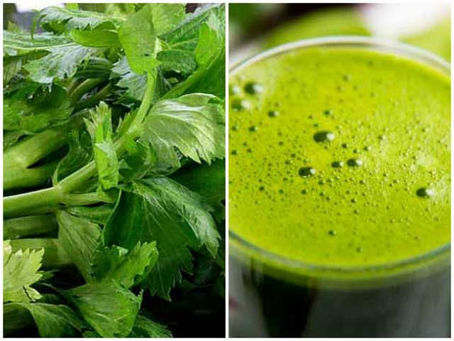 Celery, Natural Herb for High Blood Pressure