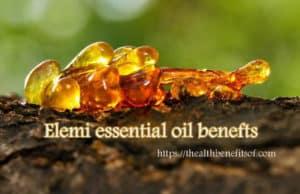 elemi essential oil