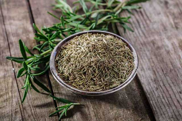 rosemary oil, essential oils for gout
