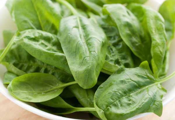 Spinach Foods Help to Lower Calories