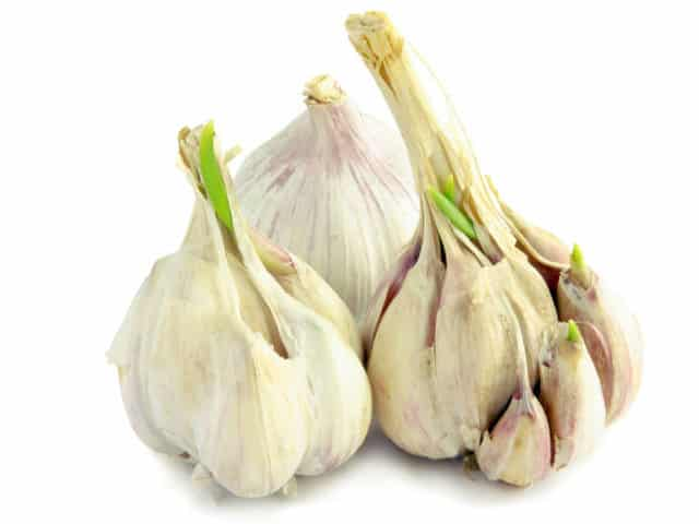 keep your liver healthy with garlic