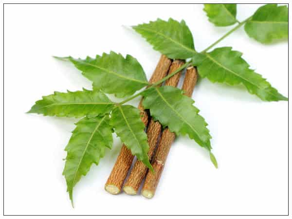 benefits of brushing teeth with neem stick