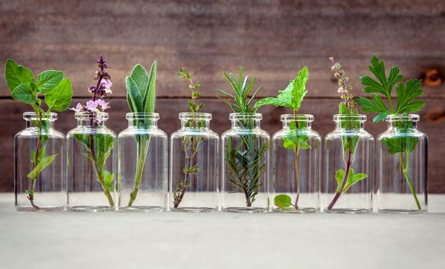10 Herbs You Should Use More in Your Kitchen