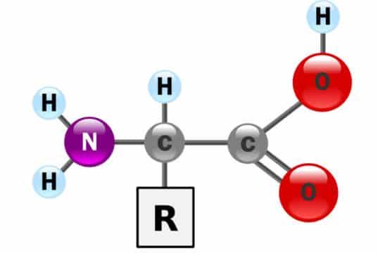 Health Benefits of Amino Acid Supplements