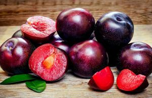 how many calories in a plum