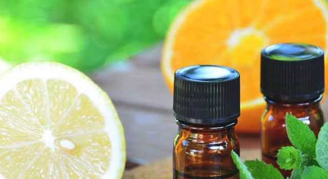 Essential oils for UTI