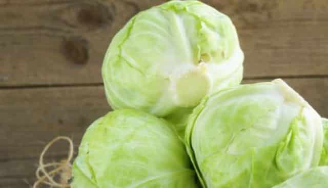 Foods High in Glutamine, cabbage