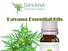Davana Essential Oil Health Benefits