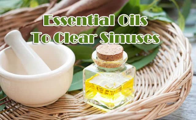 Essential Oils To Clear Sinuses