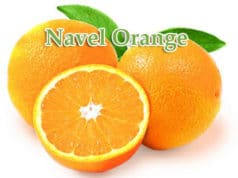 Calories In A Navel Orange