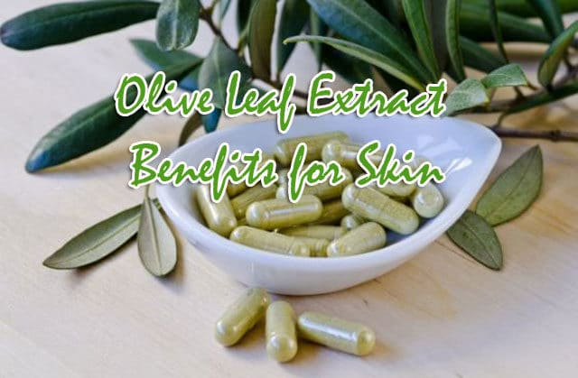 Olive Leaf Extract Benefits for Skin