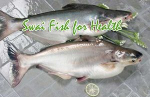 Swai Fish Important Facts