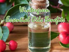 Wintergreen Essential Oil Benefits