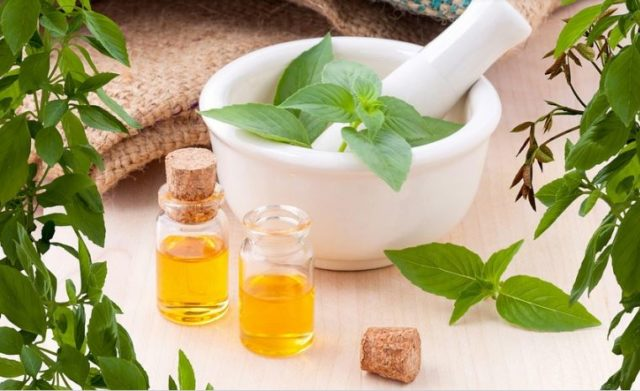 Benefits of Spearmint Essential Oil